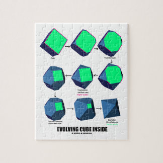 Evolving Cube Inside (Math & Geometry) Puzzles