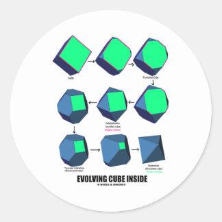 Evolving Cube Inside (Math & Geometry) Classic Round Sticker