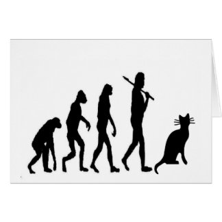 """Evoultion Cat """"We Believe""""-Funny Cat Lovers Card"""