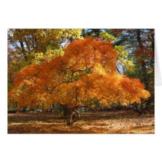 Ev's Tree Card