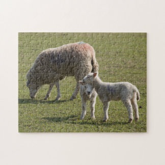 Ewe and Lambs Jigsaw Puzzle