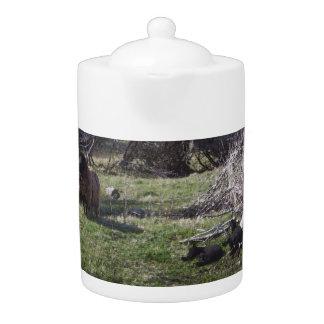 Ewe and Lambs Teapot