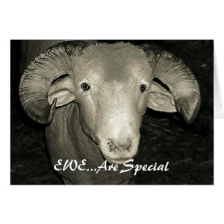EWE...Are Special Card