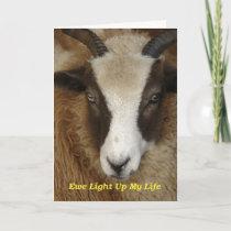 Ewe Light Up My Life Birthday Card