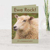 Ewe Rock! Sheep Birthday Card