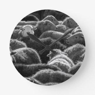 Ewes in Black and White Round Clocks