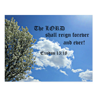 Ex. 15:18 The Lord shall reign forever and ever. Postcard