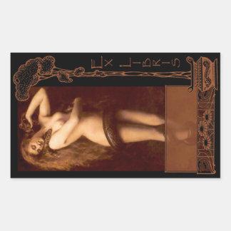 Ex placa de libro de Libris - de Lilith Pegatina Rectangular