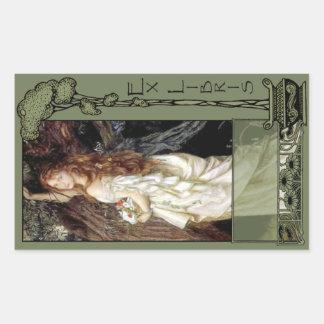 Ex placa de libro de Libris - de Ophilia Rectangular Pegatina
