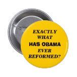EXACTLY WHAT HAS OBAMA EVER REFORMED? PINS
