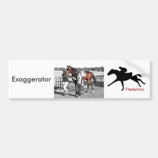 Exaggerator Bumper Sticker