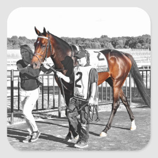 Exaggerator Square Sticker