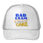 Examen para ejercer la abogacía - pedazo de torta gorras de camionero