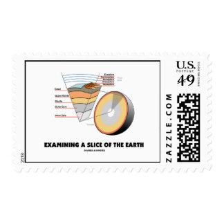 Examinando una rebanada de la tierra (las capas de sellos