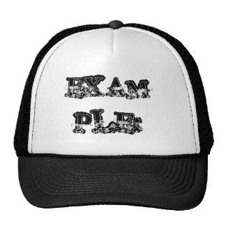 EXAMPLE: TRUCKER HAT