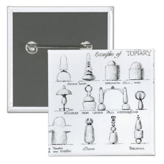 Examples of Topiary Work, 1902 (engraving) (b/w ph Pinback Button