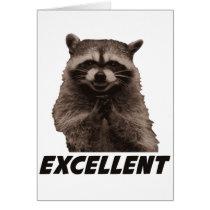 Excellent Evil Plotting Raccoon