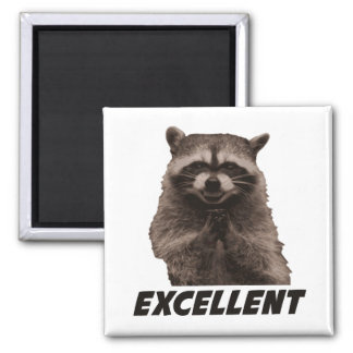 Excellent Evil Plotting Raccoon 2 Inch Square Magnet