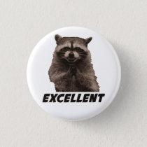 Excellent Evil Plotting Raccoon Button