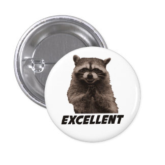 Excellent Evil Plotting Raccoon Button