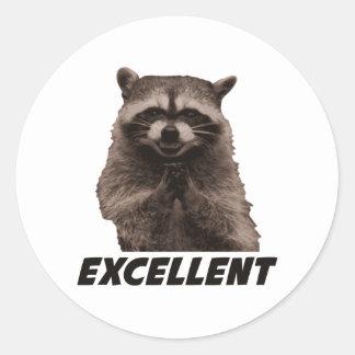 Excellent Evil Plotting Raccoon Classic Round Sticker