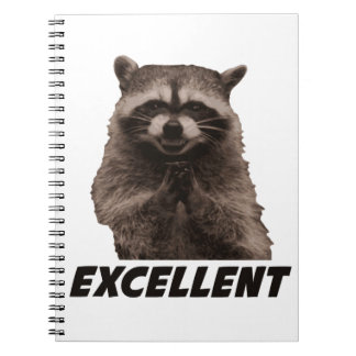 Excellent Evil Plotting Raccoon Spiral Note Books