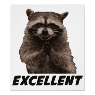 Excellent Evil Plotting Raccoon Poster