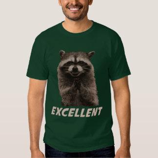 Excellent Evil Plotting Raccoon Tee Shirt
