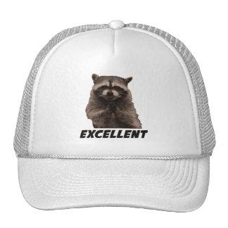 Excellent Evil Plotting Raccoon Trucker Hat