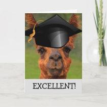 Excellent Llama Graduation Card