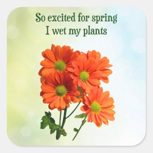 Excitado tan para la primavera I mojado mis Pegatina Cuadrada