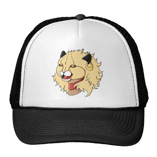 Excited Mesh Hat