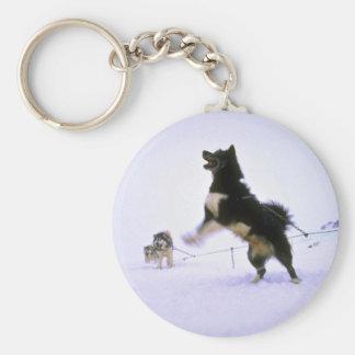 Excited sled dog basic round button keychain