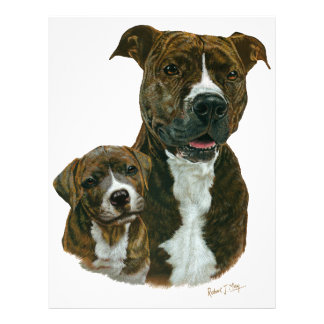 Exclusive Old Timer Sanctuary Pit Bull and Puppy Custom Letterhead