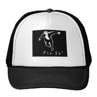 Exclusive Pin It CAP at zazzle.com/davyart* Mesh Hat