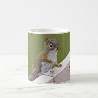 Excuse Me, Ma'am coffee mug