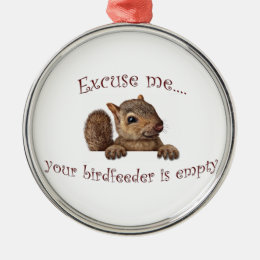 Excuse me...your birdfeeder is empty metal ornament
