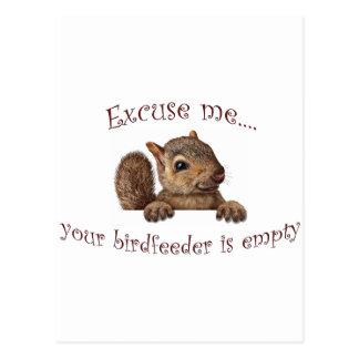 Excuse me...your birdfeeder is empty postcard