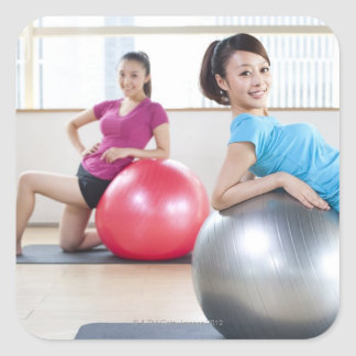 Exercise Balls Stickers