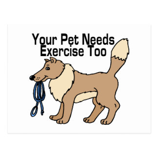 Exercise Your Pet Postcard