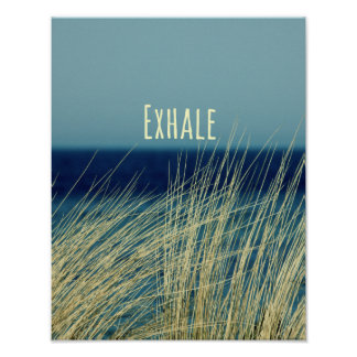 Exhale la escena del océano que calma