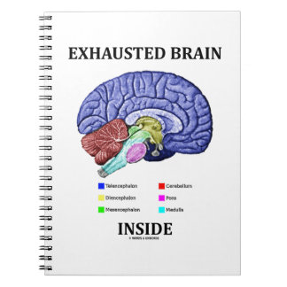 Exhausted Brain Inside (Anatomical Brain Humor) Notebook
