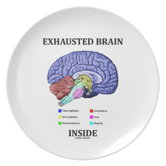 Exhausted Brain Inside (Anatomical Brain Humor) Plate