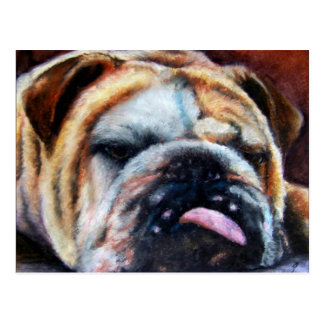 Exhausted (Bulldog) Postcards