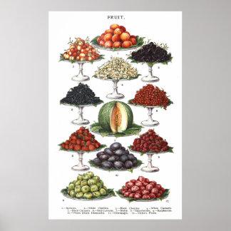 Exhibición de diversas frutas en los discos impresiones