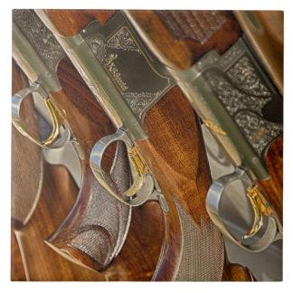 Exhibición de la colección del arma azulejo cuadrado grande