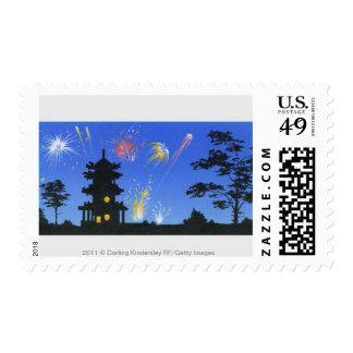 Exhibición del fuego artificial y silueta de la sellos