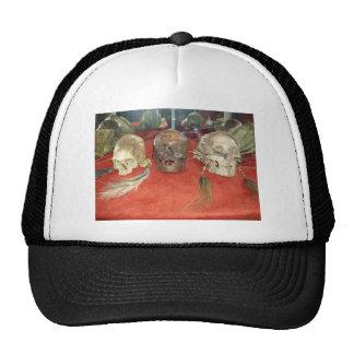 Exhibición encogida del vudú de las cabezas gorro de camionero