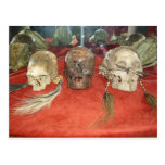 Exhibición encogida del vudú de las cabezas postal