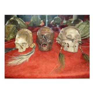 Exhibición encogida del vudú de las cabezas tarjetas postales